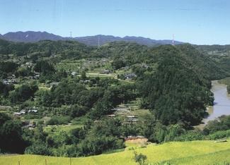 泰阜の田園